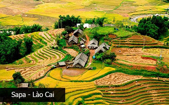 Cáp quang FPT Lào Cai